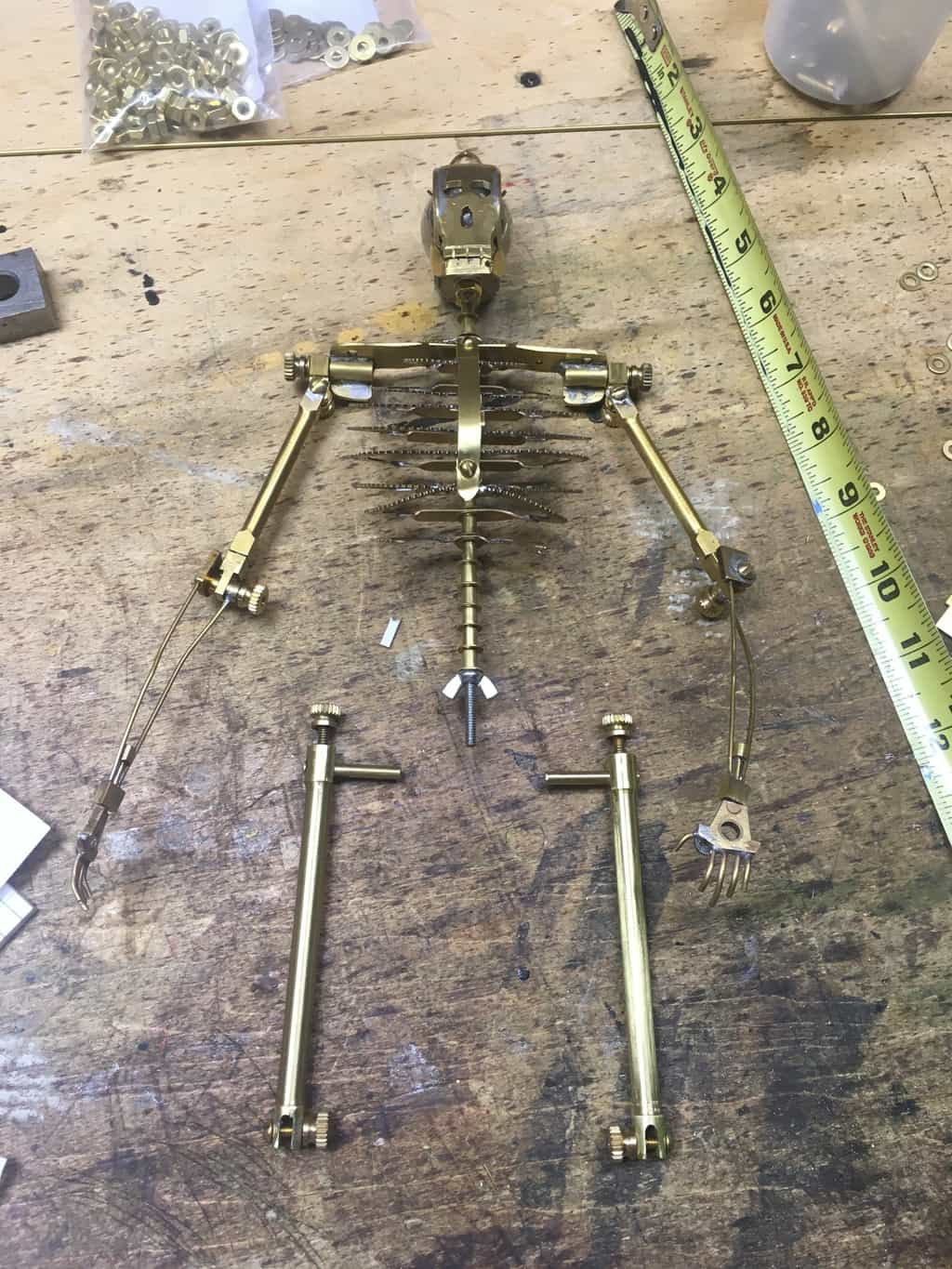 91 Femurs layed in place